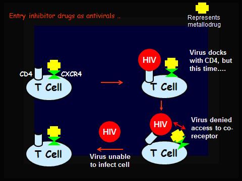 entry-inhibitor