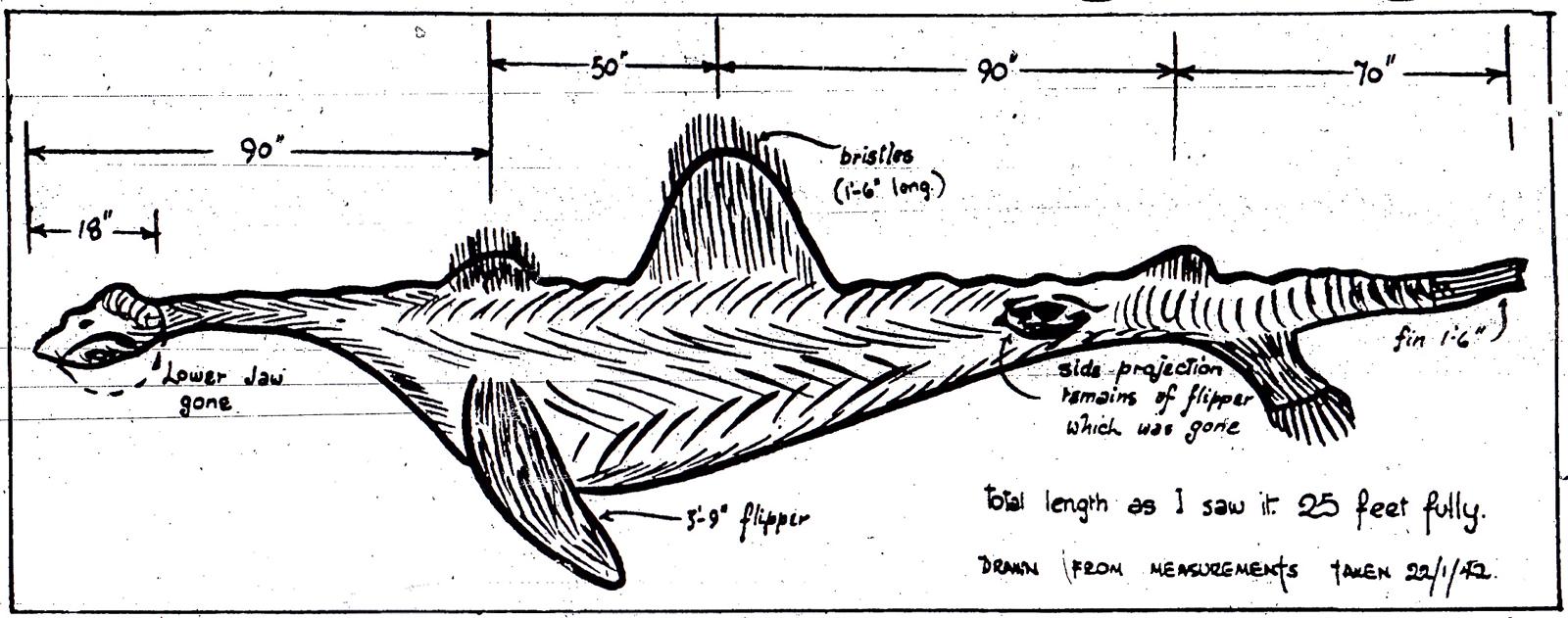 Orkney-monster--artistsimpression