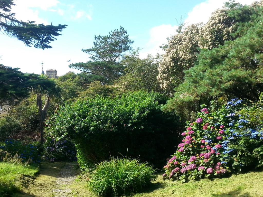 Amhuinnsuidhe garden 2