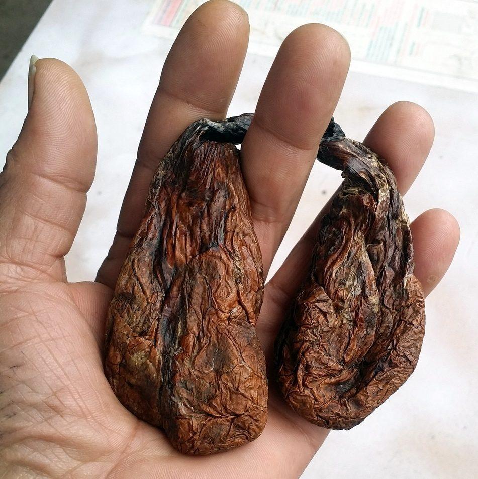 Dried beaver castors