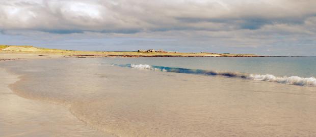 Orkney Spring 445